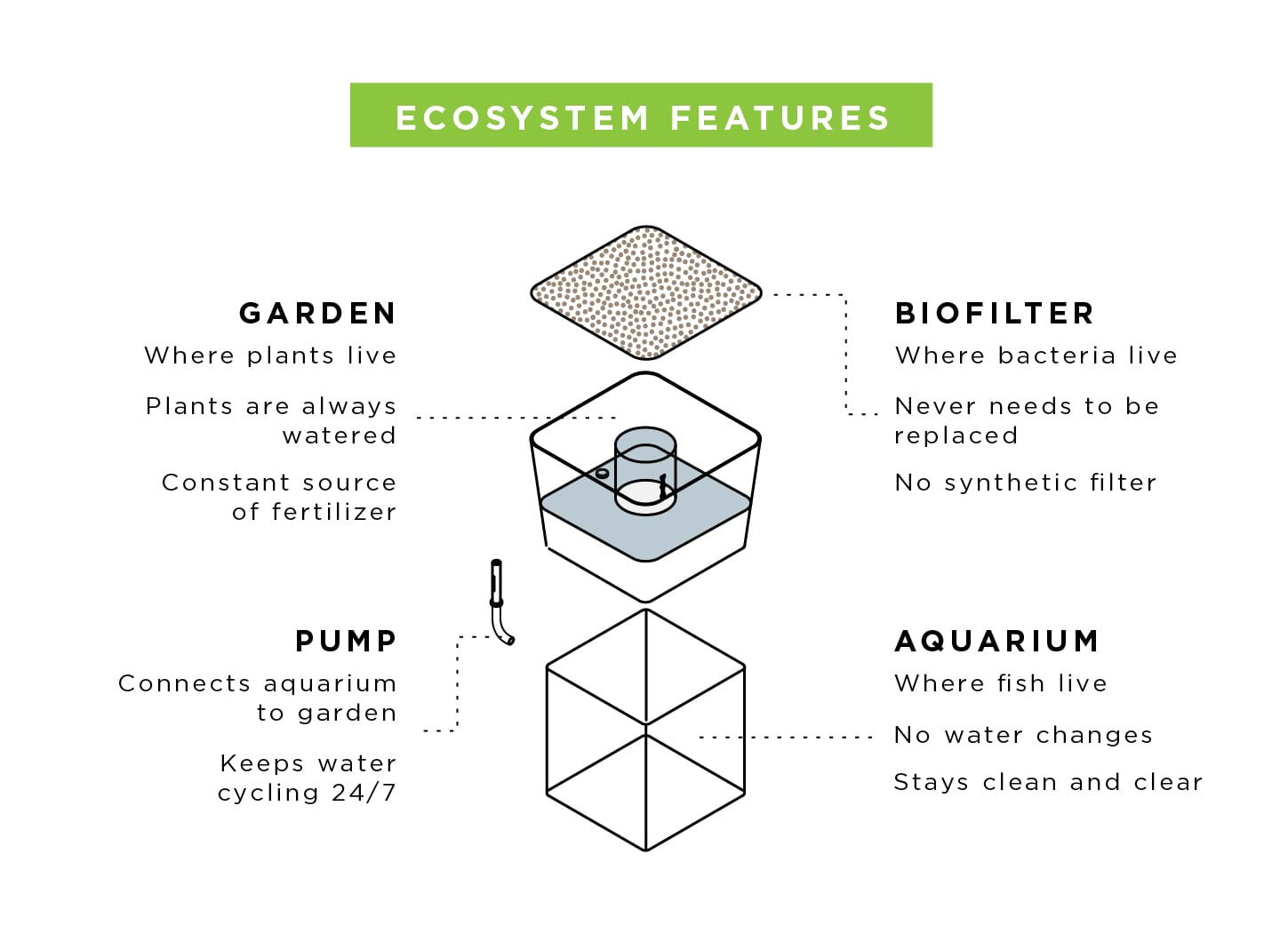 Just Learn - Ecosystem features